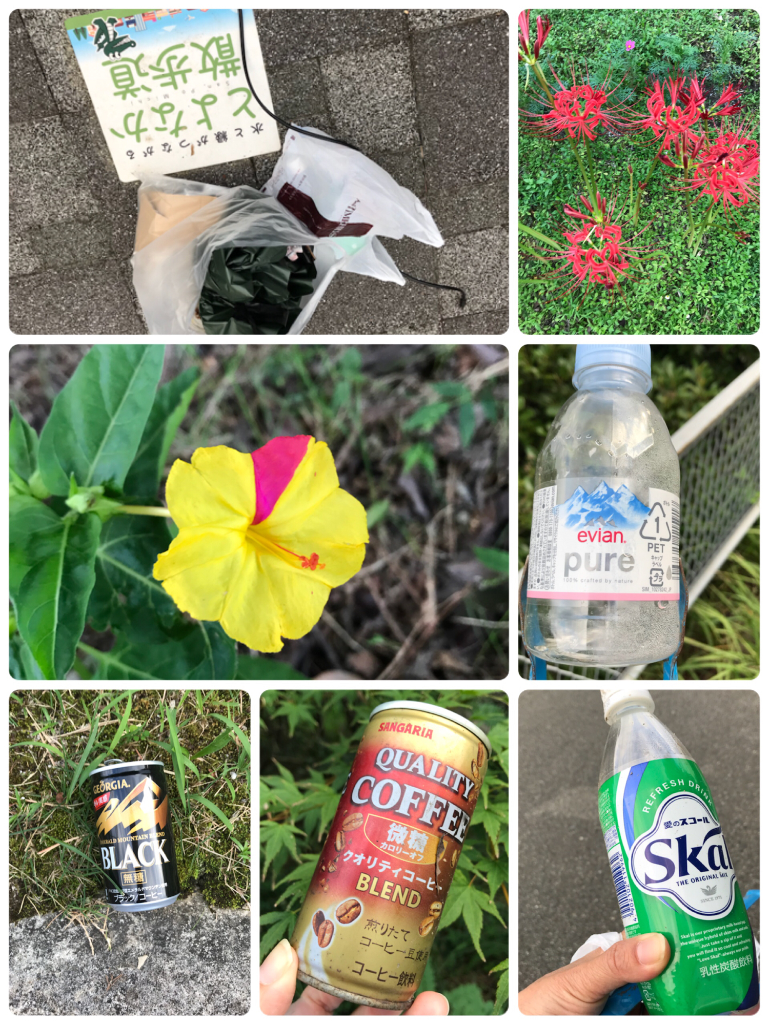 #worldcleanupday 何となく今日は、いい一日でした。お疲れ様でした⸜(*˙꒳˙*)⸝